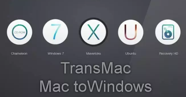 Image result for Transmac Pro 2020 Crack""